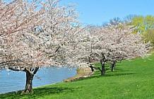 Spring In Portsmouth