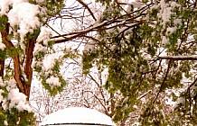 Park Gazebo Winter