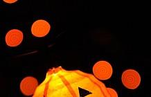Halloween Displays